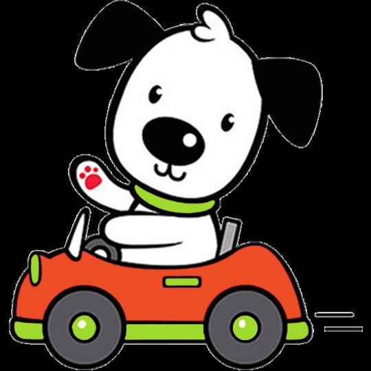 Dog driving.